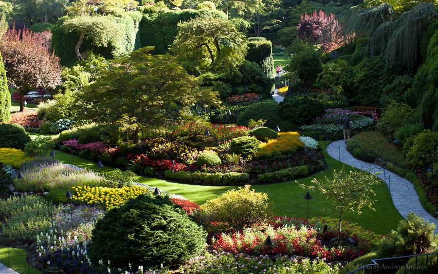 ботанические сады мира фотографии